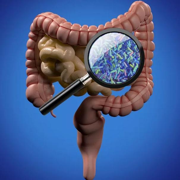 Многосерийный  бестселлер  про микробов от врача практика. 1 ая серия.
